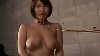Submissive Asian slut with big natural tits deepthroats a s
